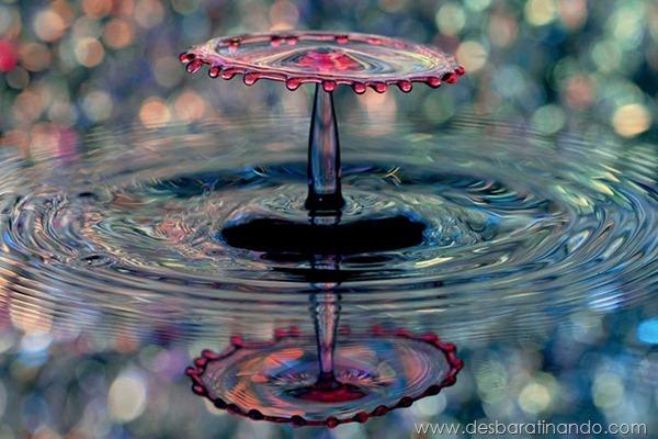 liquid-drop-art-gotas-caindo-foto-velocidade-hora-certa-desbaratinando (210)