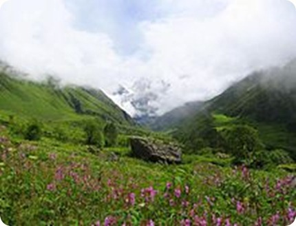 Valley_of_flowers_uttaranchal_full_view