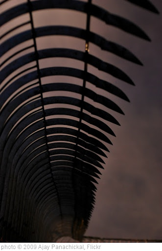 'Fence' photo (c) 2009, Ajay Panachickal - license: http://creativecommons.org/licenses/by-sa/2.0/