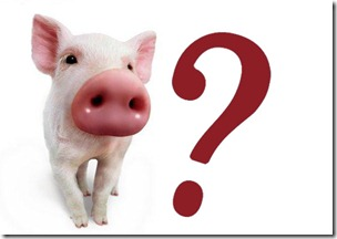 cerdo vidente