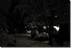 snowpocalypse  21