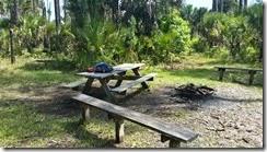 Tiger Branch campsite