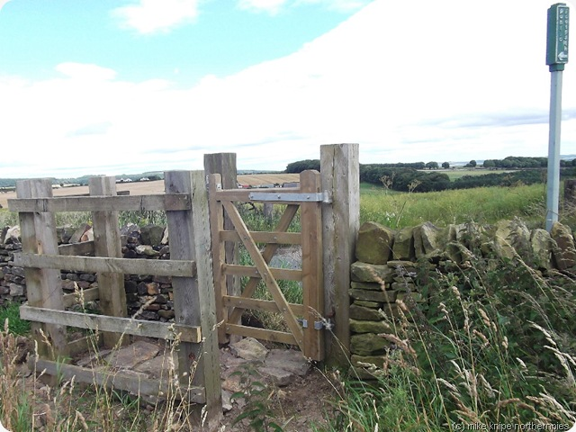 new stile dowfold hill