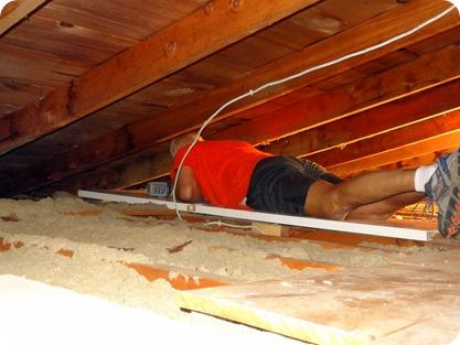 paul in attic