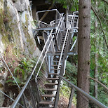 the cliffwalk at the Capilano Suspension Bridge in North Vancouver, British Columbia, Canada
