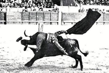 1910-07-10 (p. Nuevo Mundo dia 14) La cogida de Bienvenida Foto 01