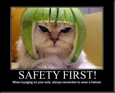 safetycat