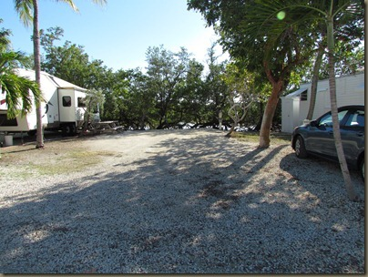 one of the few larger sites at big pine key fishing lodge...roads are narrow though..site 47