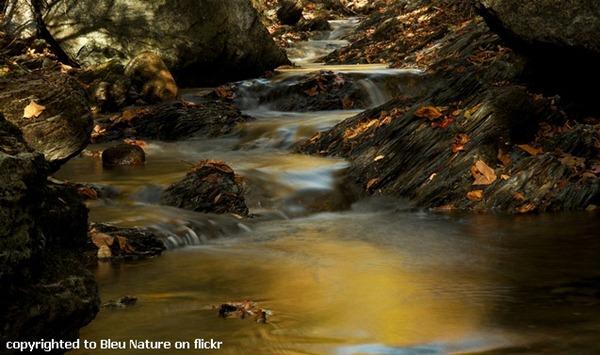 bleu nature flickr gold river