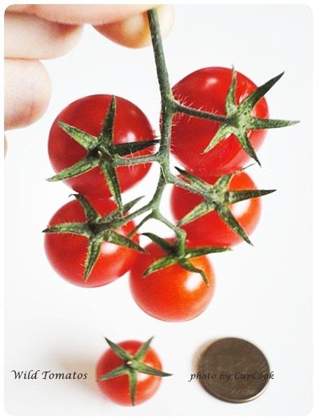 tomato (19)