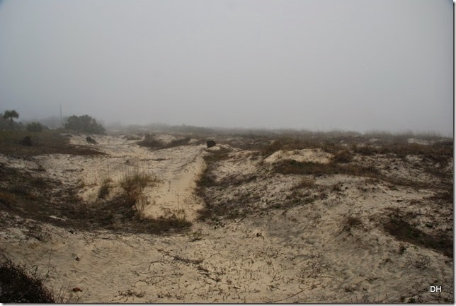 03-20-15 C Jekyll Island (87)