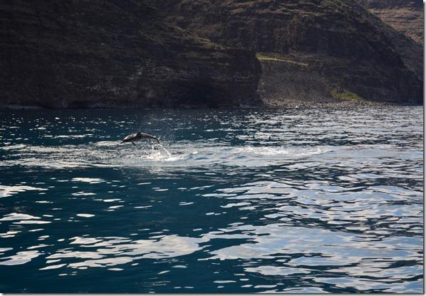 Hawaii 418