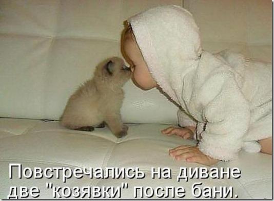 54589c9375a259fa84f771411ee_prev