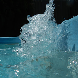 Summer Splash by Erin Boreham - Novices Only Objects & Still Life ( water, splash, pool, pump, summer )