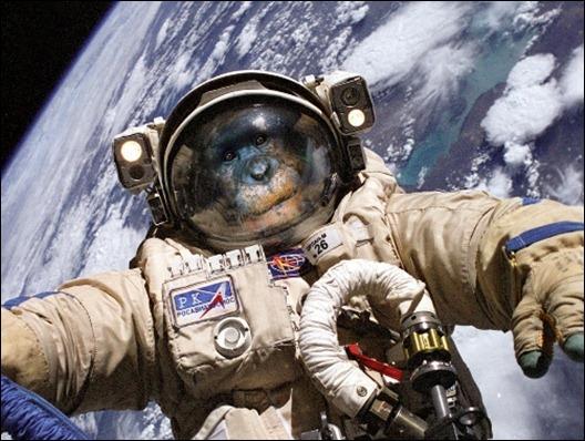 jonni-kosmonavt