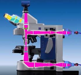 mikroskop ultraviolet
