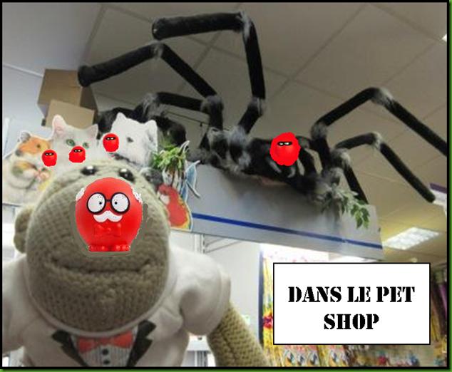 Dans Le pet shop