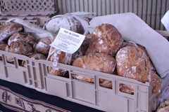 asheville-bread-baking-festival020