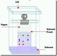 paper chromatography chamber