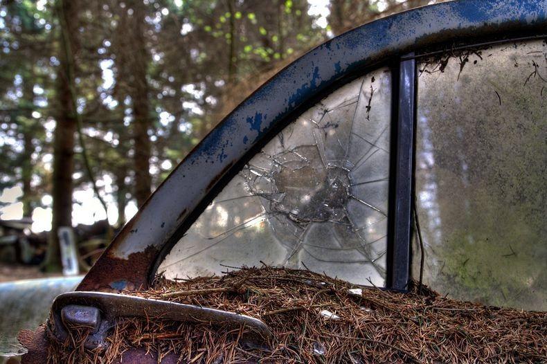 Αυτό το μποτιλιάρισμα υπάρχει σε ένα βελγικό δάσος για 70 χρόνια - dinfo.gr