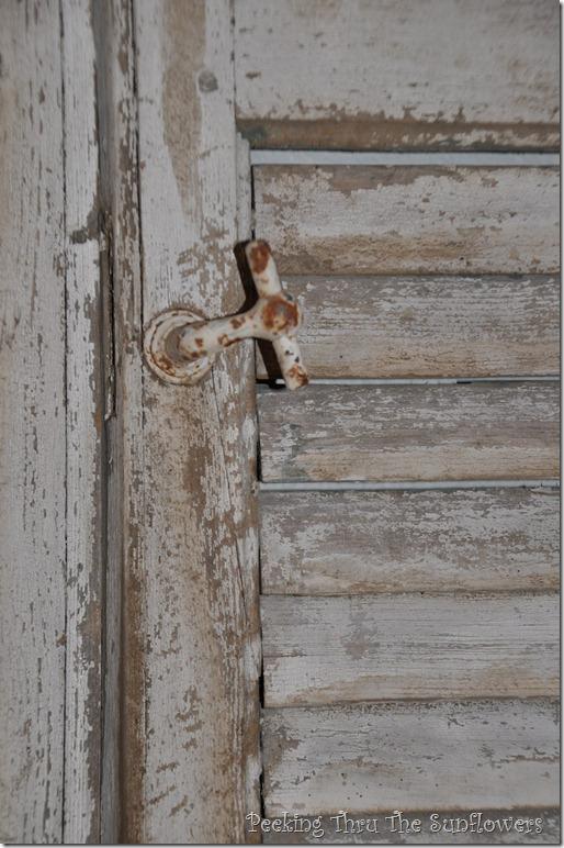 shutters2 005