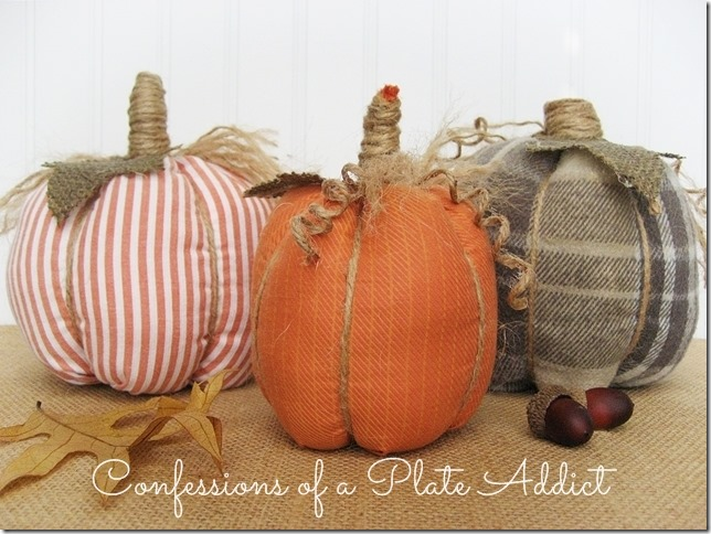 CONFESSIONS OF A PLATE ADDICT No-Sew Shirt Pumpkins
