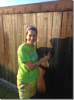 Painting the Fence (2)