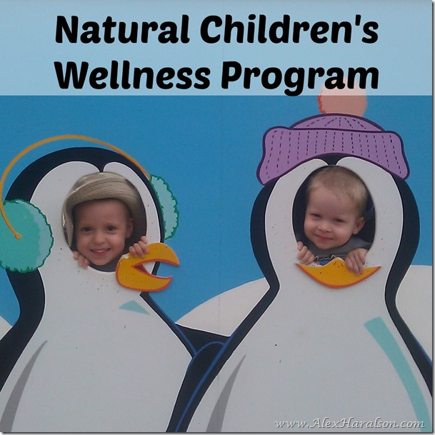 natural childrens wellness program2