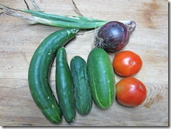 Cucumbers, tomatoes and a red onion