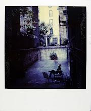jamie livingston photo of the day September 16, 1982  ©hugh crawford