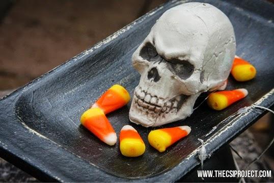 skull-candy-dish7