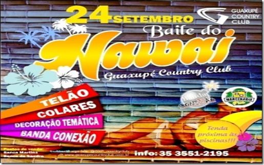 flyer_hawai_2011_1