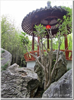 chinesegarden5