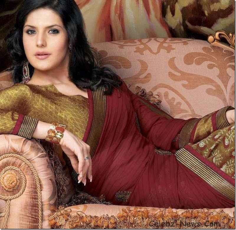 zarine-khan-saree-1