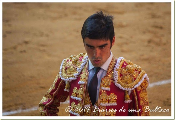Toros 2014 (1)-28