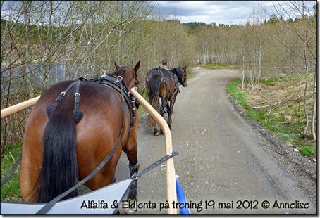 2012-19mai-alf_01