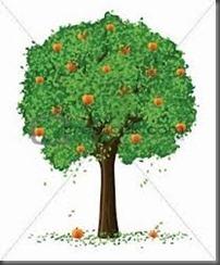 pokok rambut