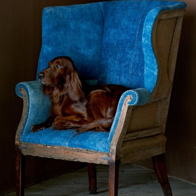 Wing chairs, the choice is yours…