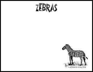 Zebras6