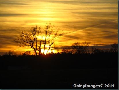 sunset 112711 (6)