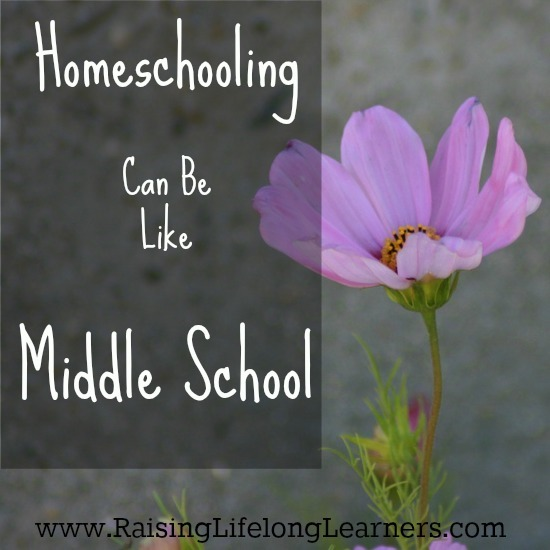 Homeschooling Can Be Like Middle School
