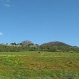 agriculture-algerie-300x225.jpg