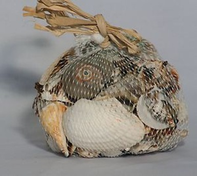bag of shells