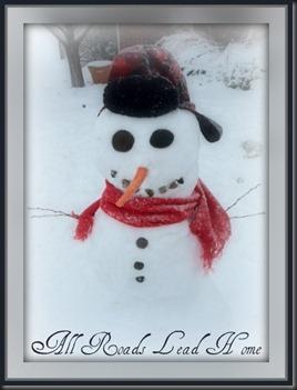 snowman 20115 ARLH Pro Pic