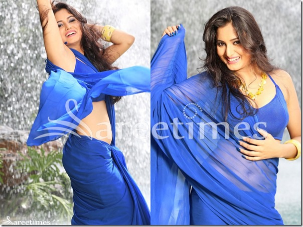 Harinakshi_Blue_Saree