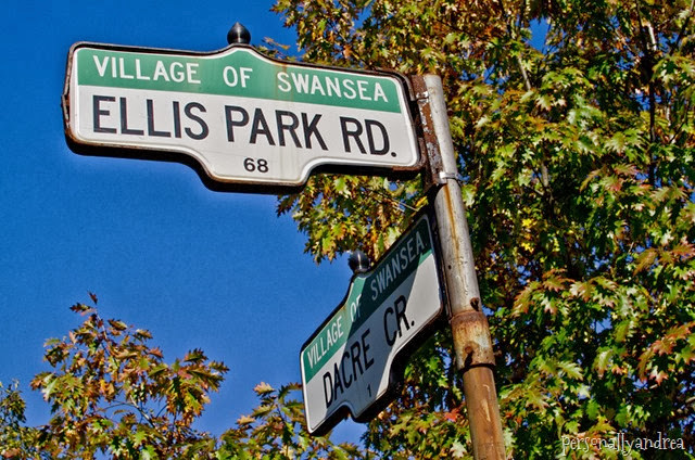 High Park Fall Colours | street signs | personallyandrea.com