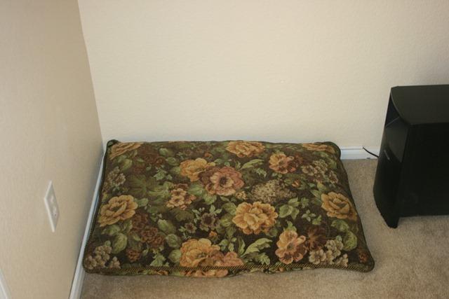 Rudi's Cushion 008