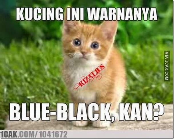 meme-gaun-putih-emas-dan-biru-hitam__dadanpurnama.com (5)
