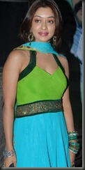 Payal Ghosh in_churidar (2)