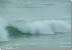 ness waves